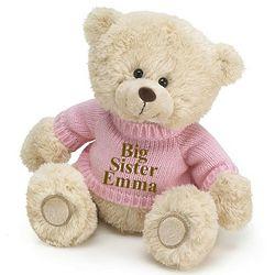 Personalized Big Sister Plush Teddy Bear