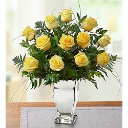 Premium Long Stem Yellow Roses in Silver Vase