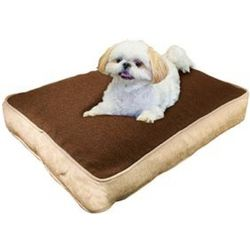 Non-Allergenic Pet Pillow