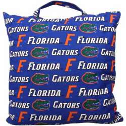 Florida Gators Game Day Cushion