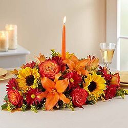 Large Fields of Europe for Fall Centerpiece