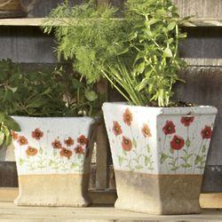 Terra Cotta Semi-Glazed Poppy Planters