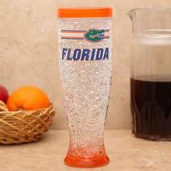 Florida Gators Hi-Def Freezer Pilsner