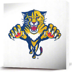 Florida Panthers White Logo Canvas