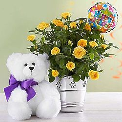 Small Happy Birthday Bouquet and Teddy Bear Bundle