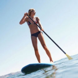 Charleston Paddleboard Eco Tour Experience Gift
