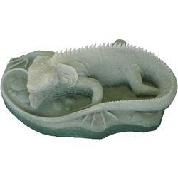 Iguana Figurine in Caribbean Coral