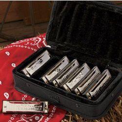 Loduca Blues 7-Pack Harmonica Gift Set