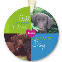 Personalized Pet Photo Collage Beveled Glass Ornament