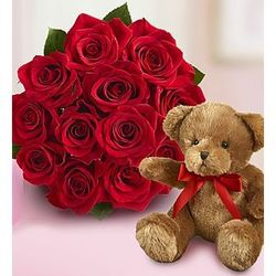 Red Roses with Teddy Bear Gift Set