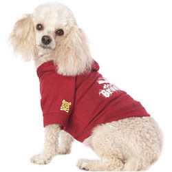 Brooklyn Burgundy Dog Hoodie