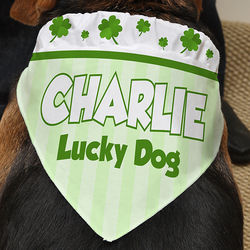 Lucky Dog Personalized Pet Bandana