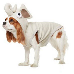 Elephant Hoodie for Dogs