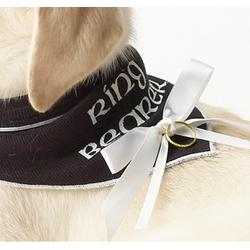 Doggie Ring Bearer Bandana