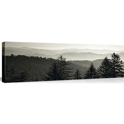 Dawn at Great Smoky Mountains National Park Cherokee, NC Canvas