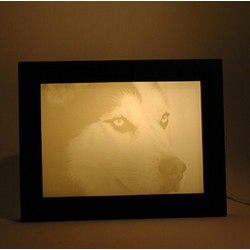 Peronalized Lithophane Pet Lovers Dog Photo Light