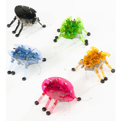Hexbug Robotic Toy Bug
