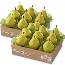 Two Boxes of Summertime Bartlett Pears