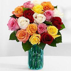 18 Vibrant Birthday Roses