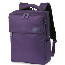 Laptop Computer Daypack