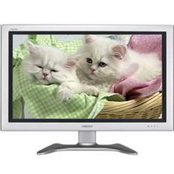 Ambient Kittens: A Companion For You or Your Kitty DVD