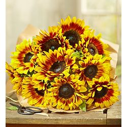 Mahogany Sunflowers Bouquet