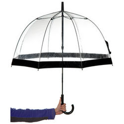 Transparent Birdcage Umbrella