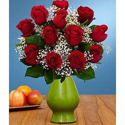 One Dozen Red Roses with Baby's Breath in Vase