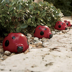 Solar Ladybug Garden Lights