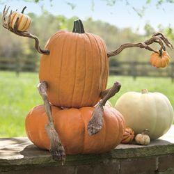 Halloween Pumpkin Appendages