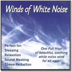 Winds of White Noise CD