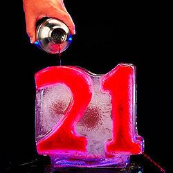 21st Birthday Ice Luge