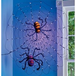LED Lighted Spider Web