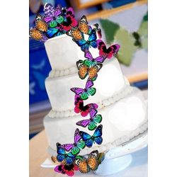 15 Edible Monarch Butterfly Cake Decorations