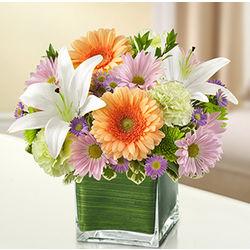Healing Tears Multicolor Sympathy Bouquet