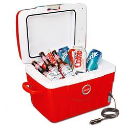 Electric Picnic Cooler