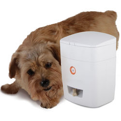 Wireless Pavlovian Canine Trainer