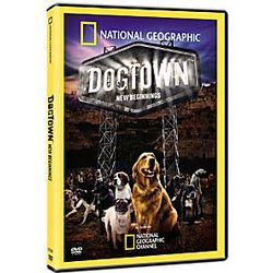 DogTown New Beginnings DVD