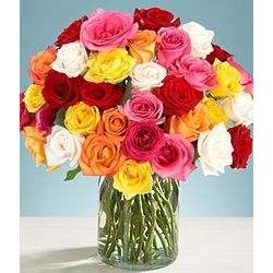 Three Dozen Rainbow Roses