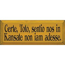 Not in Kansas Anymore Latin Plaque