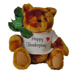 Thanksgiving Teddy Bear