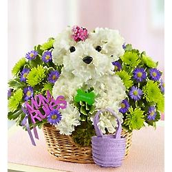 Mama Paws Floral Bouquet