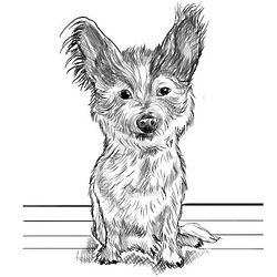 Pet Caricature Printed at Home