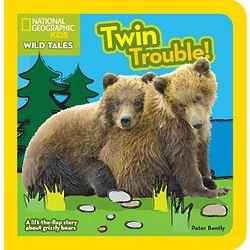 Twin Trouble Board Book