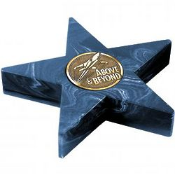 Navy Mini Star Medallion Award