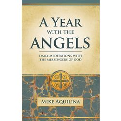 A Year With the Angels Book
