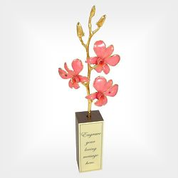 Mother's Day 5 Flower Gold Edged Orchid in Engravable Walnut Vase