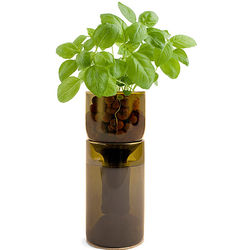 Organic Herb GrowBottle