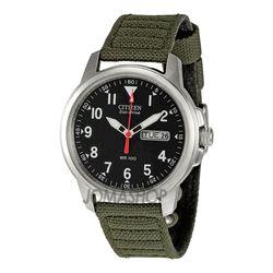 Citizen Strap Eco-Drive 180 Men's Watch