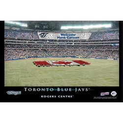 Personalized 16x24 Toronto Blue Jays Stadium Canvas